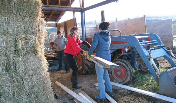 From left: students Kate Harling, Ania Chwala and Brittney Stanwa haul lumber as part of a United Way Day of Caring held in November.