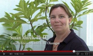 Susan Murch featured in Hawai'i breadfruit research documentary