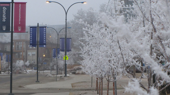 a snowy view of campus