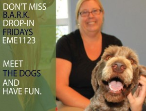 BARK drop-in spots available