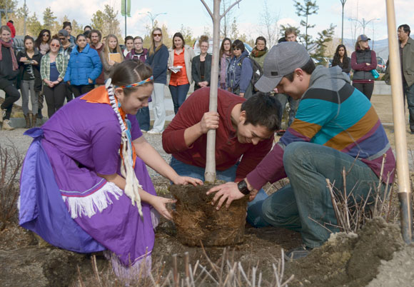 From left: UBC students Hailey Causton, Nicholas Clark and Spencer Belcourt tease the roots out on the maple tree next to the outdoor amphitheatre, just southeast of the EME building, before the tree is placed in the ground.