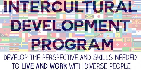 Intercultural Development Program logo