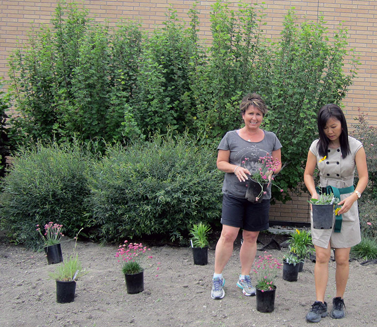 Garden Club members Krista Stokell (left) and Jennifer Ma get ready to plant at the south-side plant bed of the Reichwald Health Sciences Centre.