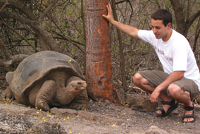 Michael Russello and colleagues from Yale found evidence of genetic diversity among tortoises of the Galápagos Islands