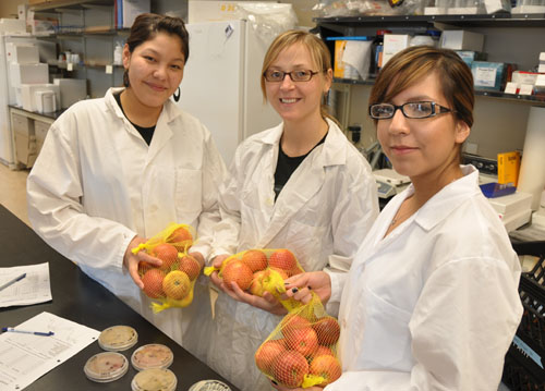 High school students Michelle Moose, left, and Danielle Iron, right, in the lab with graduate student researcher and mentor Daylin Manytka, middle. Moose and Iron won an all-expenses-paid trip to UBC Okanagan in a national science competition through the Advanced Foods and Materials Network.