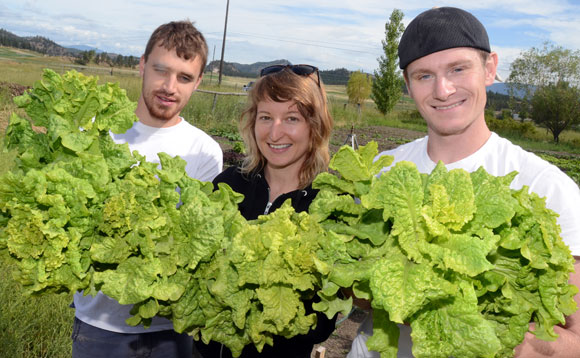 UBC political science and geography student Steve Schiffbauer, left, geography student Kathleen Taylor and psychology student Adam Kubel show off some of the produce grown at the Okanagan campus organic garden.