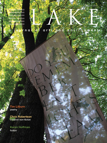 The cover of the final issue of Lake 8