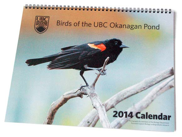 2014 Birds of the UBC Okanagan Pond calendar