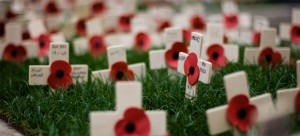 A UBC professor says In Flanders Fields may be the last great war poem that's not anti-war. Photo: Owen Benson, Flickr