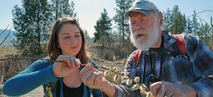 UBC graduate Christina Smyth and Assoc. Prof. Ian Walker discuss some of the flora found on UBC's Okanagan campus. They will be among those conducting a BioBlitz tour around campus on Saturday, March 21, from 9 a.m. to 3 p.m.