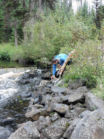 UBC student Keith Story sets up water testing equipment on a creek that is regularly accessed by cattle. Researchers are testing for pathogens such as Cryptosporidium and E. coli.