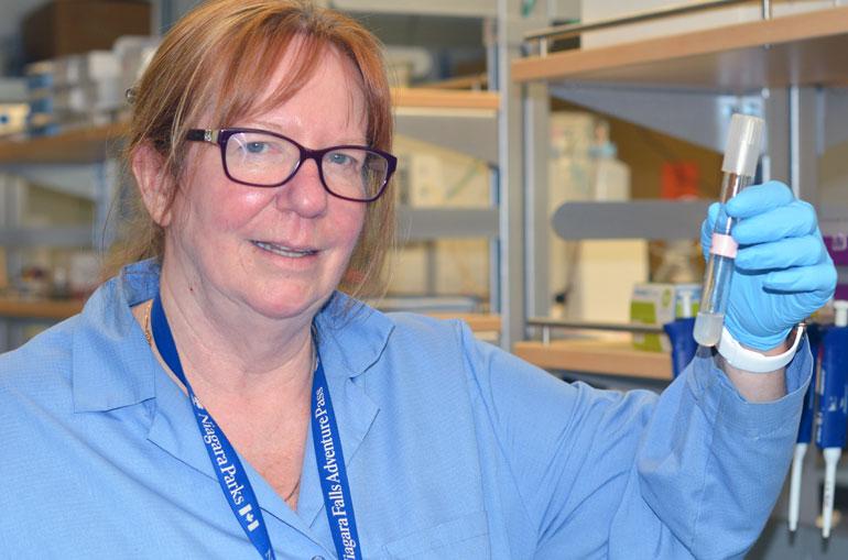 Deborah Roberts, professor of engineering .