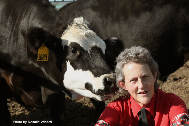 World-renowned author and animal rights activist Temple Grandin