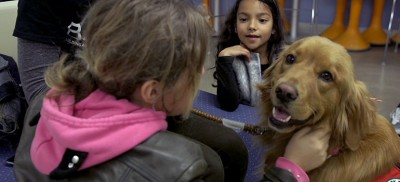 UBC Okanagan's Building Academic Retention through K9s (BARK) program has been mentoring 22 children, aged between five and 12 years old from the Okanagan Boys and Girls Club.