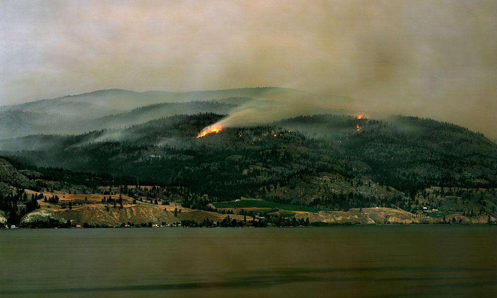 Fire burning on a hillside